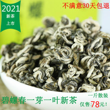 202bo明前新茶 ca芽一叶高山云南大叶种绿茶 散装500克