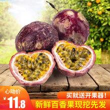 广西新bo水果皱皮果km奶茶店用10斤