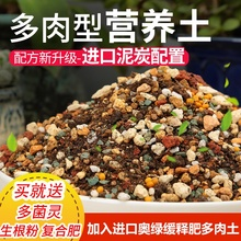 包邮1br斤多肉专用an培育种植多肉育苗多肉泥炭土铺面石
