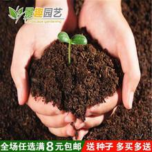 盆栽花bu植物 园艺fi料种菜绿植绿色养花土花泥