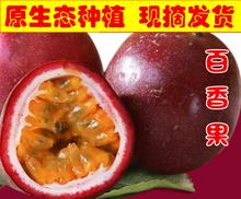 广西大by新鲜水果紫06香果酱白香果酸甜可口包邮