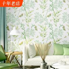 (小)清新bz视背景墙纸xw园风格绿色(小)碎花温馨卧室客厅北欧