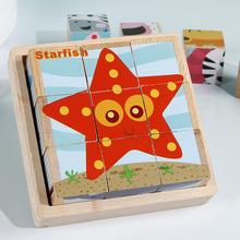 [caisilu]9颗粒儿童六面画拼图木质