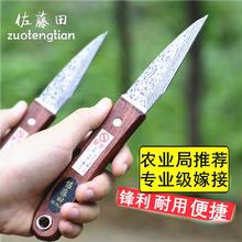 苗木嫁cd芽接刀嫁接tx树刀果削刀接树刀接树刀工具