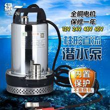 高扬喷ce污水抽水泵la用静音加压水泵抽水机便携动车洗车配件