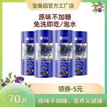 宝桑园ch果干4筒1in含花青素广东农科院原味无沙无蔗糖