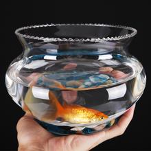 创意水ci花器绿萝 je态透明 圆形玻璃 金鱼缸 乌龟缸  斗鱼缸
