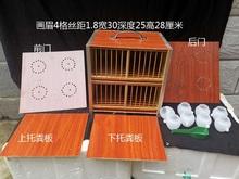 贵州凯ci画眉专用丹da八哥鹦鹉黄豆子运输箱运输笼