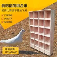 信鸽组合巢箱赛鸽子笼子木cl9鸽具大号ff笼实木种鸽笼