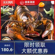 龙虾波co顿澳洲澳龙ds大波龙奥龙波斯顿海鲜水产大活虾