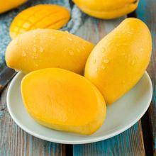 柬埔寨高co蜜5斤现摘nc鲜时令水果当季热带水果非玉芒