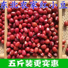 红豆 东北农家自产红(小)豆 co10豆薏米ie5斤包邮 五谷杂粮
