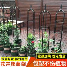阳台玫co爬藤架铁线ar牵引花铁艺月季花架室外攀爬植物支撑杆