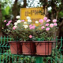 阳台绿cr花卉花架悬nc杆花架配托长方形花盆架阳台种菜多肉架