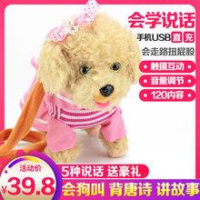 宝宝电ct毛绒玩具狗xw路(小)狗会唱歌会叫狗狗玩具说话的仿真狗