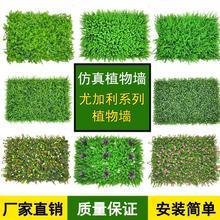 塑料草cu植物墙背景tu墙室内阳台装饰假草皮的造草坪