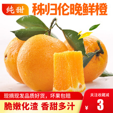 现摘新cu水果秭归 eh甜橙子春橙整箱孕妇宝宝水果榨汁鲜橙