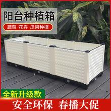 多功能家庭cu菜 阳台种ti备 加厚长方形花盆特大花架槽