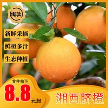 湖南湘dd9斤整箱新iu当季手剥甜橙20应季大果包邮橙子10
