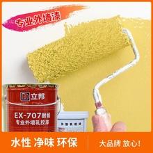 立邦外de乳胶漆防水an包装(小)桶彩色涂鸦卫生间包
