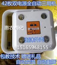 孵化设de控温器家用ve蛋器自动型孵化器孵蛋器(小)鸡浮暖