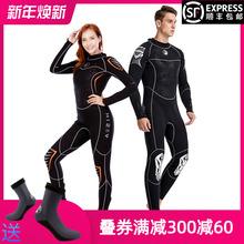 hisdea男3MMig暖女连体水母防寒湿式冬季浮潜冲浪游泳衣