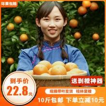 广西桂do夏橙新鲜橙fe10斤应季水果榨汁现摘大个橙子包邮