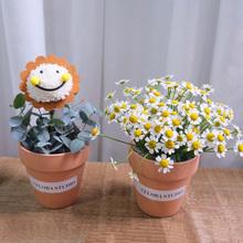 mini玫dz笑脸洋甘菊rg海同城送女朋友鲜花速递花店送花