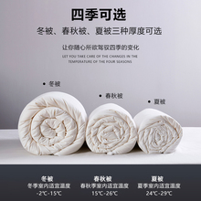 大豆纤ed被冬被春秋ly棉被加厚保暖双的子母被二合一被子被芯
