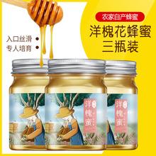 养蜂农洋槐蜂蜜纯正天然老