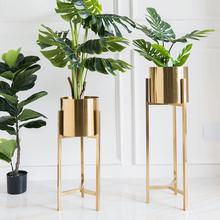 北欧轻fa电镀金色 th视柜墙角绿萝花盆植物架摆件花几