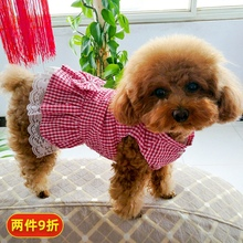 泰迪猫fa夏季春秋式ci幼犬中型可爱裙子博美宠物薄式