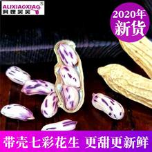 202fa新七彩花生mi生食品孔雀花生种子带壳花生500克