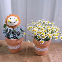 mini玫fa笑脸洋甘菊st海同城送女朋友鲜花速递花店送花