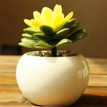 爆式时ff桌面欧式白ha圆球形多肉陶瓷(小)花卉迷你可爱个性花盆