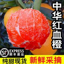 顺丰血橙精品特大果新鲜橙