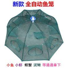 自动鱼fl折叠伞网捕yy笼渔网手抛网捕鱼笼鱼护渔具钓具