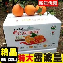 四川大fn山雷波特级jc鲜10斤大果当季水果整箱甜包邮