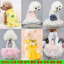 夏季薄fo泰迪比熊博ia犬猫咪宠物春夏装可爱公主裙子