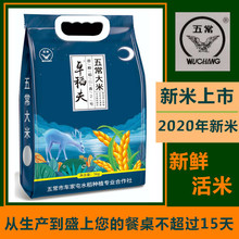 202fu年新米卓稻wt大米稻香2号大米 真空装东北农家米10斤包邮