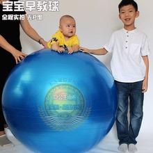 正品感统fu00cm加yb爆健身球大龙球 宝宝感统训练球康复