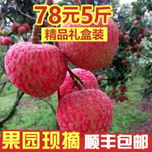 新鲜当fz水果高州白hu摘现发顺丰包邮5斤大果精品装