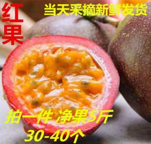 云南新ga台农紫香一pu莲大红果5斤装包邮有坏包赔