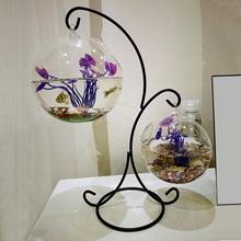 创意玻ga 家居装饰de水培花瓶摆件透明欧式浪漫艺术品鱼缸新式