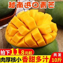 越南进ga大青芒10et水果包邮当季整箱应季特大甜心芒青皮
