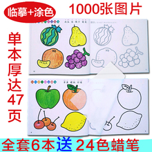 蒙纸学gc画本幼宝宝fs画书涂鸦绘画简笔画3-6-9岁宝宝填色书