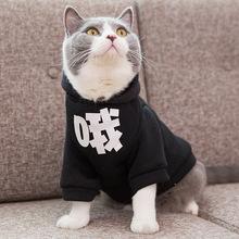 猫咪衣ge秋冬装季蓝gu幼猫狗狗冬天加厚保暖宠物搞怪搞笑装哦