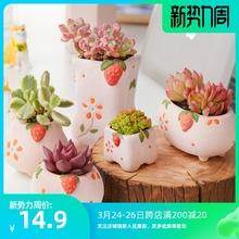 美诺花ge草莓糖陶瓷ng约可爱少女风多肉植物花盆肉肉植物花盆