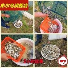 虾笼龙gi网渔网鱼网de虾网伞形折叠渔笼加厚自动捕鱼笼地网笼