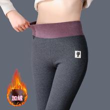 秋冬季gr棉(小)猫打底en穿加绒加厚高腰秋裤紧身大码保暖棉裤子